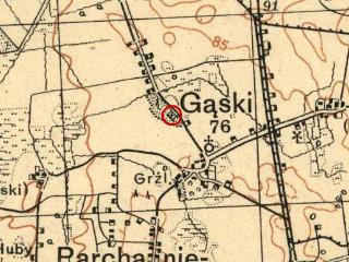 gaski.png