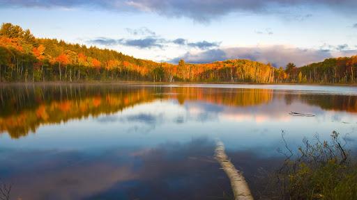 Council Lake, Hiawatha National Forest, Michigan.jpg