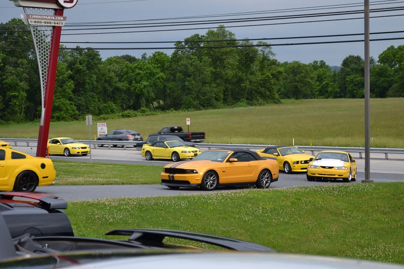 More Than 120 Mustangs Take Part In Pony Trails 2012