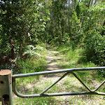 Gate just below the Mooney Mooney Trackhead (373873)