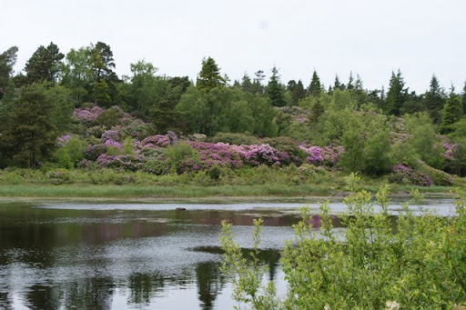 Cragside House and Gardens, Rothbury Guide, Northumberland