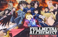 FullMetal Alchemist Brotherhood 46 Dublado assistir online