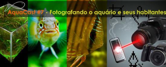 aquacast7.jpg
