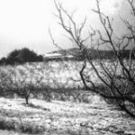 snow 1951 adelaide hills