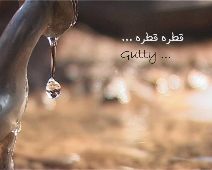 «Гати» / Gutty