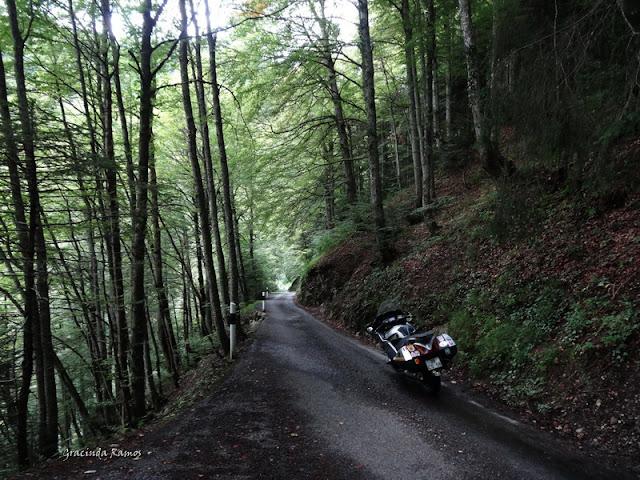 passeando - Passeando pela Suíça - 2012 - Página 9 DSC02343