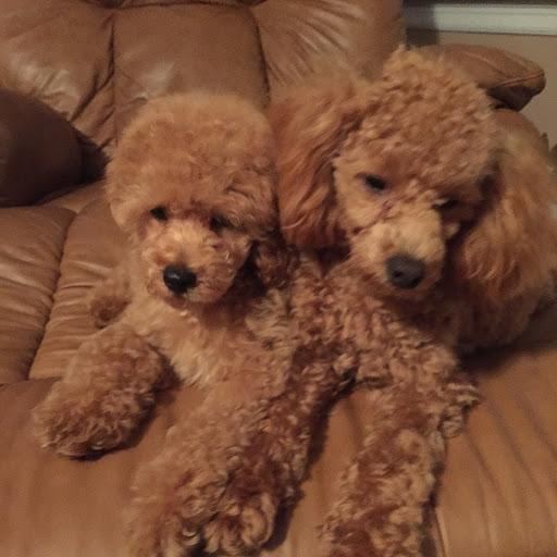 Byung Kim Photo 42