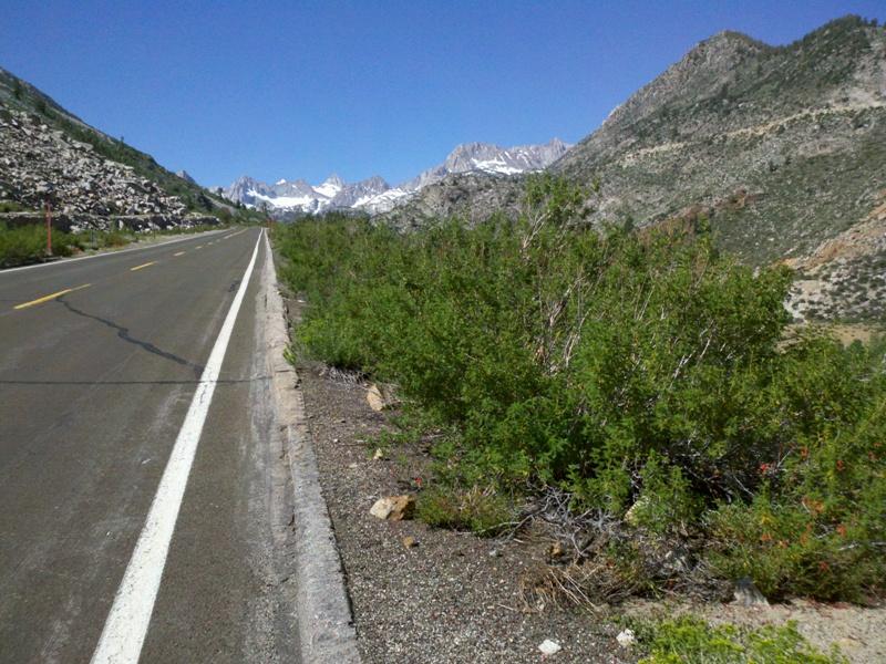 Eastern Sierra • Highway 168