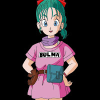 Bulma Brief contact information
