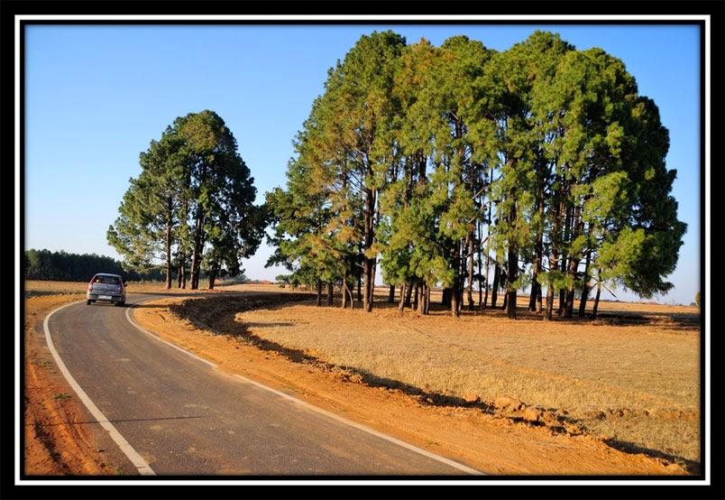 On way to Sunset point - Netarhat