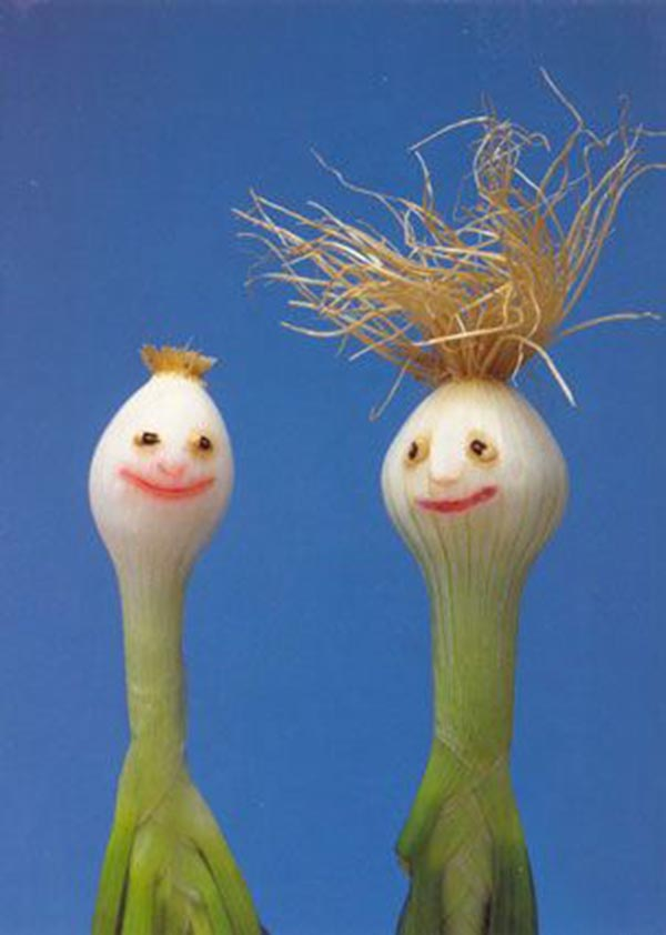 Food Art - Onion Couple