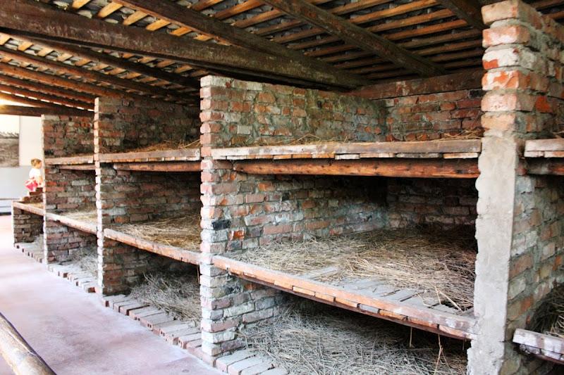 Un Al Viajero Campo Notas Auschwitz De Visita Concentración 1pqnUZ