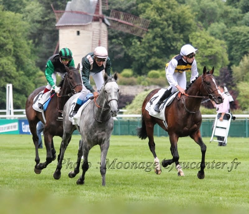 Photos Longchamp 25-05-2014 IMG_1451