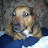 terrance murphy avatar image
