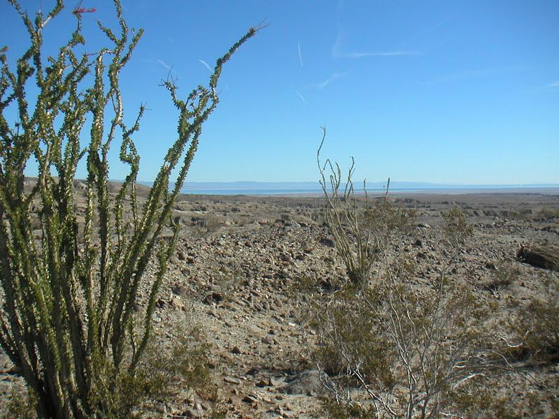 Borrego Springs Century • View of Salton Sea