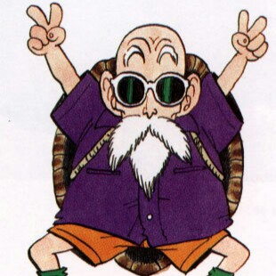 Mr Roshi review
