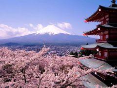 TOAssociati: Capodanno a Tokyo
