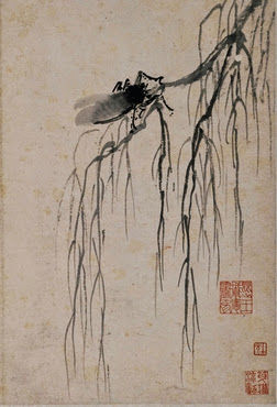 a crying cicada on an autumn willow - shen zhou