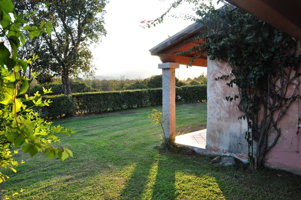 Вид с террасы комнаты Кеши и Оли