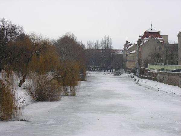 Oradea înzăpezită în 19 februarie 2012 #3