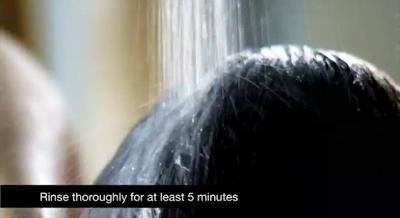 キューティクル シール クリームの使用方法