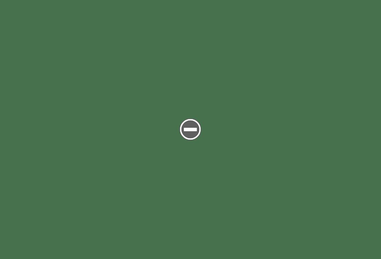 Assist-Man.jpg