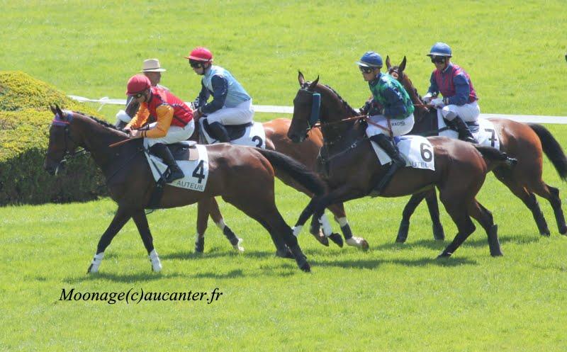 Photos Auteuil 8-06-2014  IMG_1559