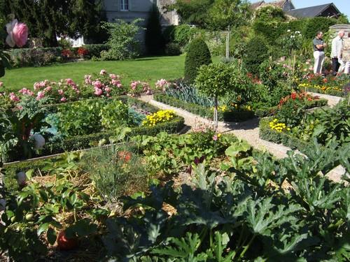 Ortogiardino giardorto ortaggi ornamentali fiori nell 39 orto biete colorate cavoli colorati un - L orto in giardino ...