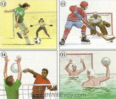 Team Sports – Picture Dictionary