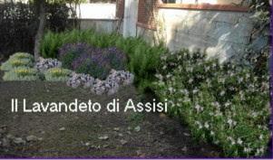 Progettare Il Giardino Gratis : Progetto giardino piccolo. idee per il design di giardini giardino