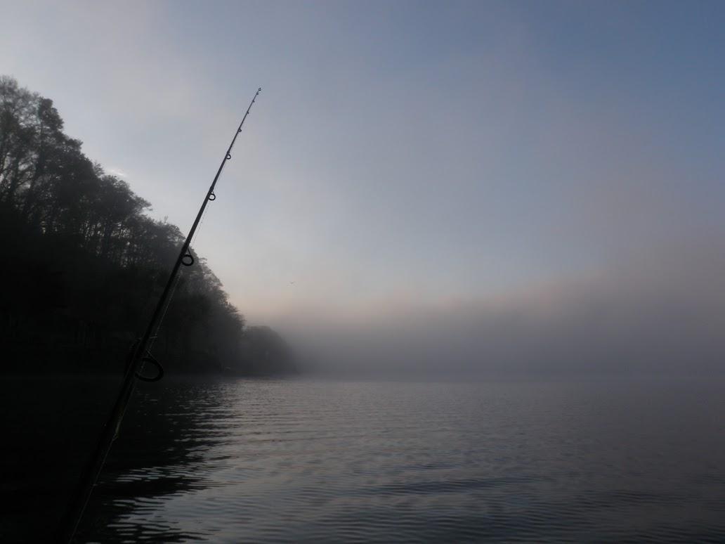 山中湖 バスフィッシング 夜明け