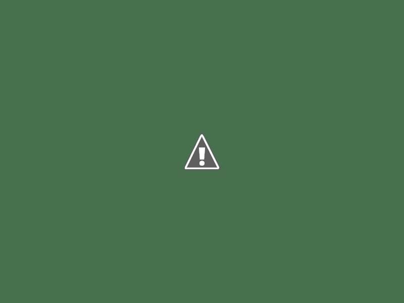Camos rusos (en imágenes) Partizan_435_6
