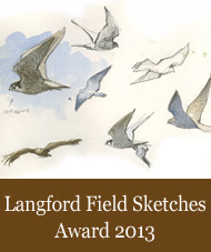Langford Field Sketches Award 2013