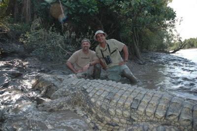 Questões e Fatos sobre Crocodilianos gigantes: Transferência de debate da comunidade Conflitos Selvagens.  - Página 2 Croc_lead_400