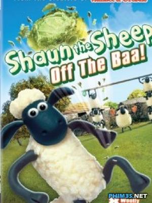 Phim Những Chú Cừu Thông Minh - Shaun The Sheep - Wallpaper