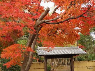 101123関宿城