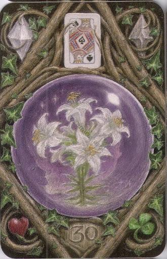 Цветов миру, магический букет ленорман