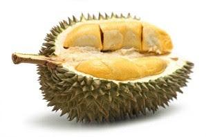 durian,manfaat durian
