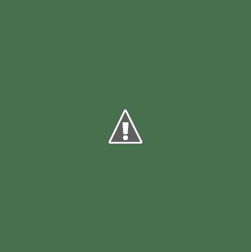 ملكة جمال الهند 2013