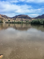 surviving the Colorado river