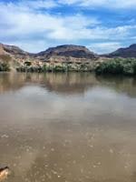 surviving the Colorado river