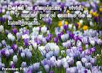 Proverbios 9.6
