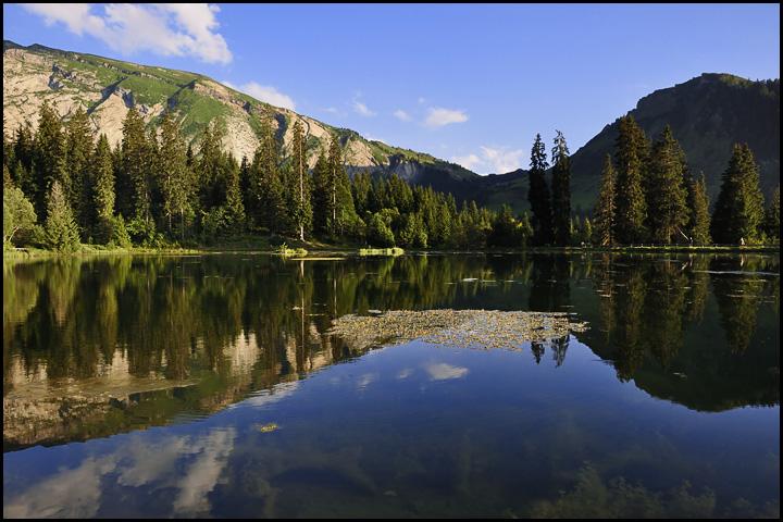 Traversée des Alpes, du lac Léman à la Méditerranée DSC_9397%2520raw-714%252Bcadre