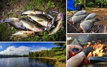 Рыбалка о которой можно мечтать
