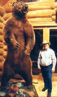 Urso pardo vs Urso polar - Página 2 Bbear