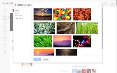 Google+ Cover Gallery