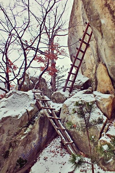 scari chilia dionisie muntii buzaului iarna