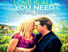 فيلم Love is All You Need