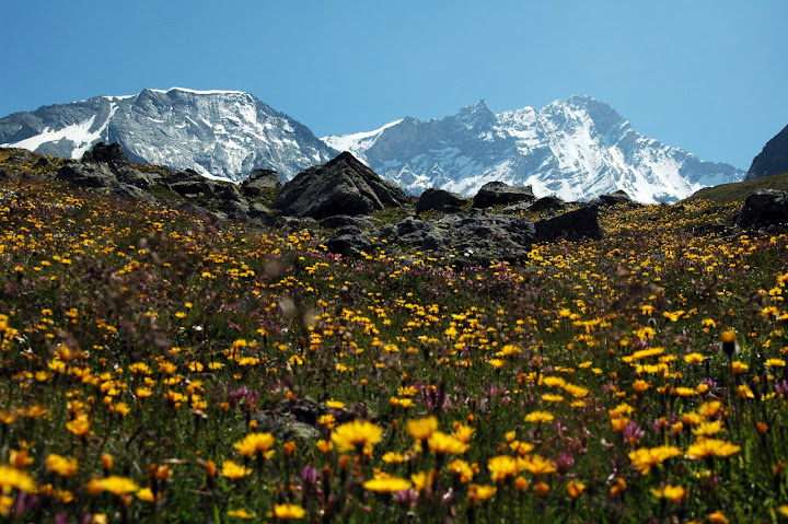 Alpy Walijskie 2009
