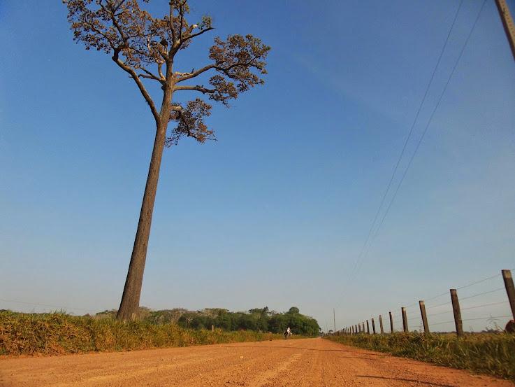 Brasil - Rota das Fronteiras  / Uma Saga pela Amazônia - Página 2 20140901_090544